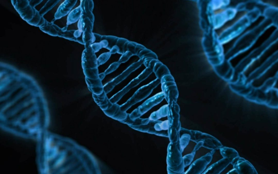 Major DNA Companies Share Your Private Genetic Data